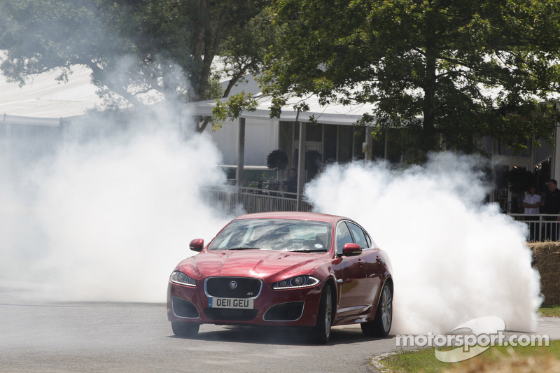 Jaguar burnout