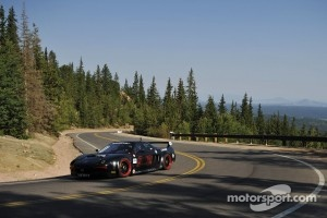 #902 Acura NSX: James Robinson