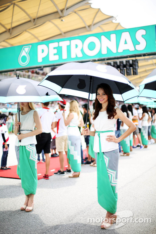 Grid girls na parada de pilotos