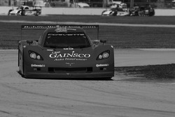 #99 GAINSCO/Bob Stallings Racing Corvette DP: Jon Fogarty, Alex Gurney