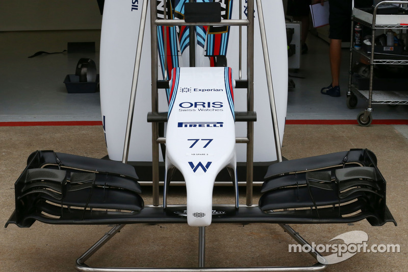 Williams FW36 alettone frontale