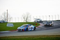 #21 Global Motorsports Grup Audi R8: Andrew Palmer