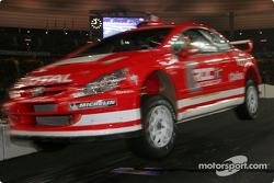Final: Sébastien Loeb jumps over the bridge