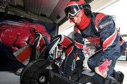 Scuderia Toro Rosso equipo