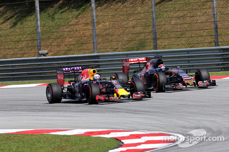 Daniel Ricciardo, Red Bull Racing y Max Verstappen, Scuderia Toro Rosso