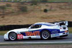 GT3 Viper Team Brookspeed Trimite at Scotsman