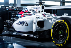 Design von Felipe Massa, Williams FW38, Detail