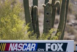 Phoenix International Raceway ambiance
