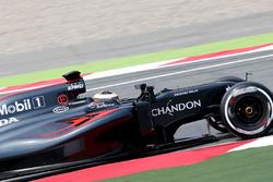 Штоффель Вандорн, тест- та резервний пілот McLaren MP4-31