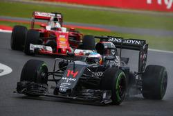 Fernando Alonso, McLaren Honda F1 Team MP4-31