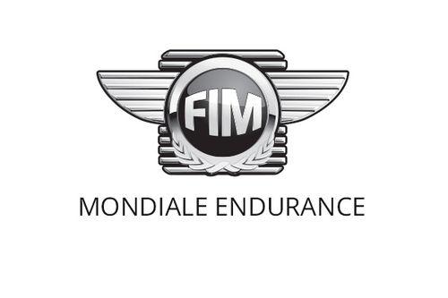 FIM Endurance