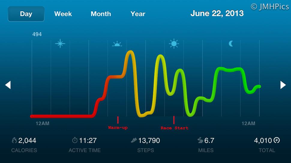 LeMans 2013 JMHPics charts