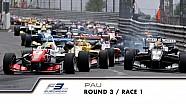 F3 Europe - Pau - Course 1