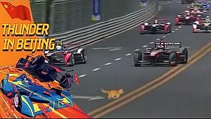 قطة على حلبة سباق الفورمولا إي في بكين!