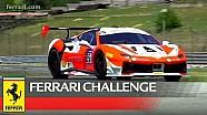 Ferrari Challenge Avrupa - Trofeo Pirelli 1. Yarış, Budapeşte